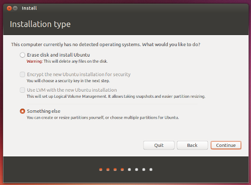 Ubuntu install - partitioning option